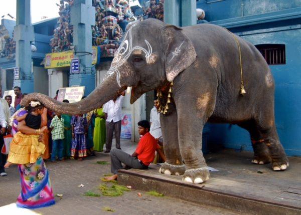 Omkara-Inde Ganesh