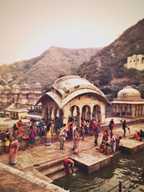 Galta, Jaipur ville rose